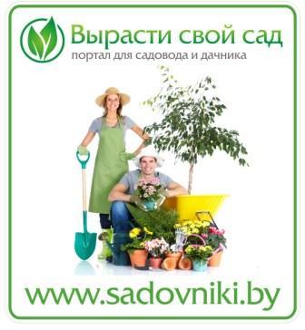 Интернет-журнал «Ваш сад и дача» является информационным интернет-партнером Международной выставки: «Сад.Флора»